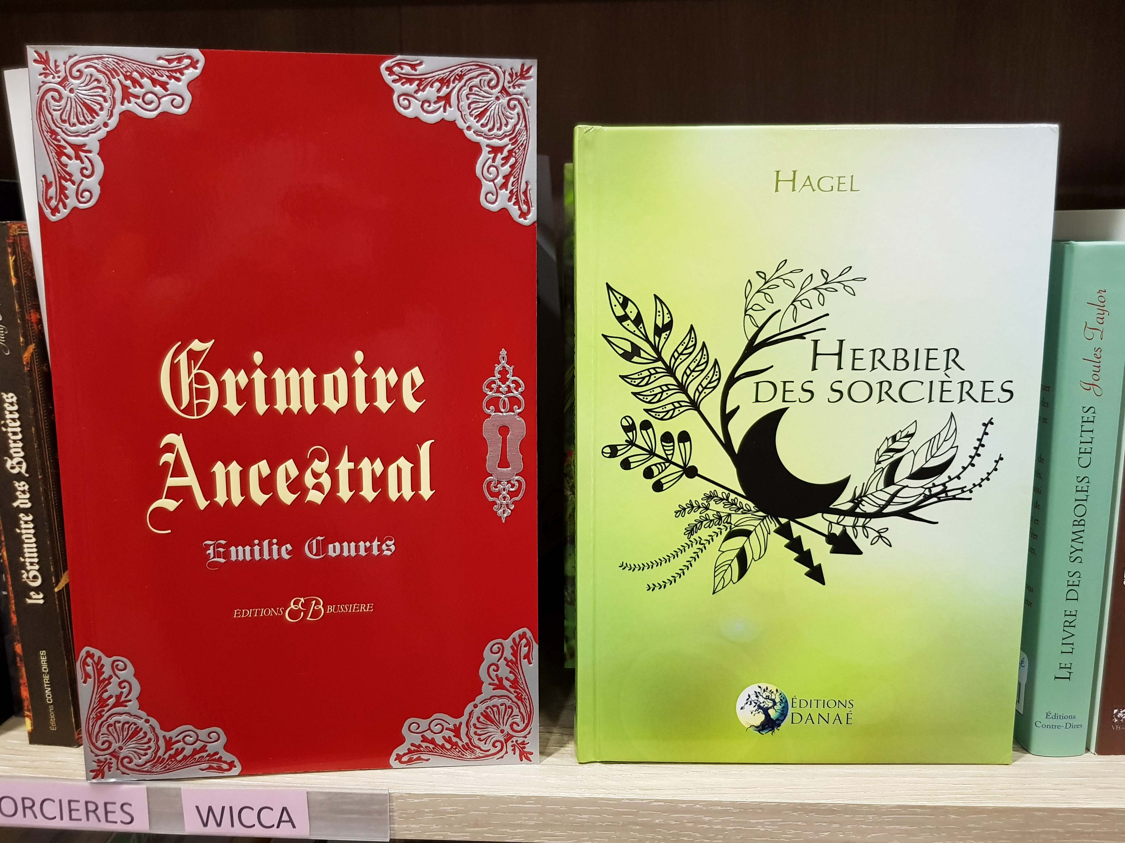 magie wicca chamanisme 3